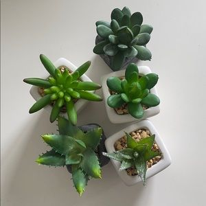 Small Collection of Fake Succulents